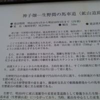 ~新緑の但馬路を満喫~参加!!!