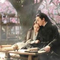 中国ドラマ 『三生三世十里桃花』