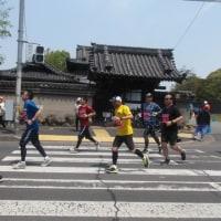 4/29(土・昭和の日)、「堺シティマラソン」完走!