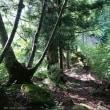 2017.7.16 国見山 * 徳島県西祖谷 + 戸木の山 * 東祖谷