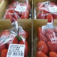 果物たくさん~週末はりんご祭り~