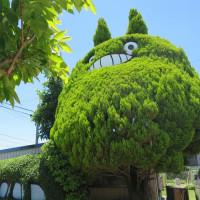 4040オフ会で日間賀島へGO!!!!!!!!