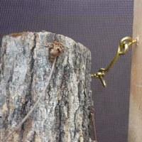 カブトムシのぼり木に「しいたけ原木」