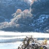 雪の後・・・カヤクグリ&ミヤマホオジロ