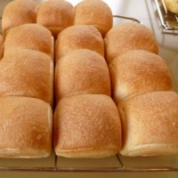今月のパン