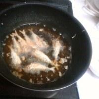 泉大津で爆釣の小鯖、天ぷらで激ウマ!