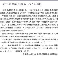 第204回KDSウォーキングクラブ実施報告(小田原)