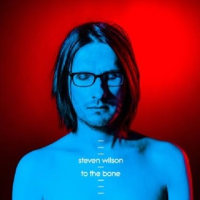 Steven Wilson/To The Bone