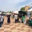 福山ばら祭り