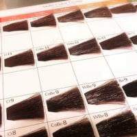抗がん剤治療が終わって生えてきた髪の白髪が気になります。    長野県 乳癌 抗癌剤治療 医療用ウィッグ・かつら オオネダ