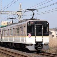 近鉄南大阪・吉野線 「さくらダイヤ」の最終日に