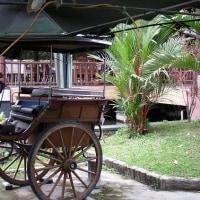 ロンボク島の観光資源?クラシック・チドモ