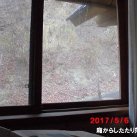 5月6日 午前8時、雨が降り始めた。