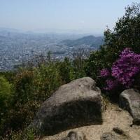 武田山の頂上に着きました