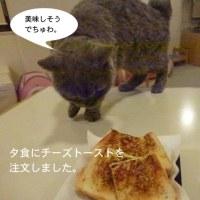 福猫茶房さん:1月20日