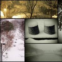 小豆水と冬の楽しみ?