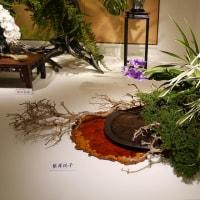 小原流展「白い秋」・・・・根岸 悦子さんの作品