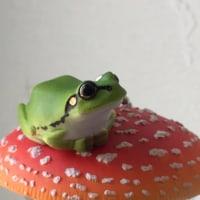 堀越神社 蛙祭