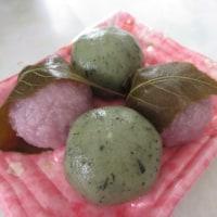 桜餅&ヨモギ餅