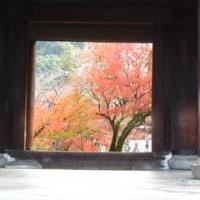 京都でちょっとだけ紅葉狩り