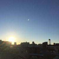 今日も青空と陽射しが嬉しいですね(^o^)(^o^)