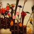 ツェツェ アソシエの四月の花器、11月の花器