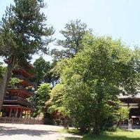 「神仏霊場巡り」海住山寺、京都府木津川市加茂町にある真言宗智山派の仏教寺院