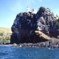 1993年のニュージーランド研究旅行 その26 タイアロア・ヘッド