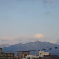 今日の太平山と今日のかいわれ
