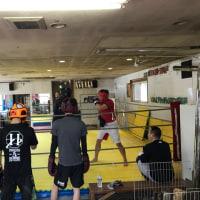 3/23下川原靖也コーチの木曜朝打撃クラス練習日記