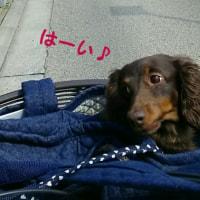 初めましての春・番外編①~名古屋~