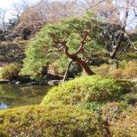 並河靖之七宝展(東京都庭園美術館)