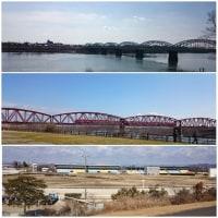 木曽川沿い  おじ散歩