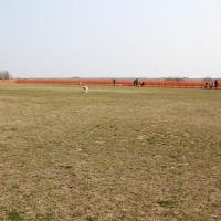 木曽三川公園ドッグラン