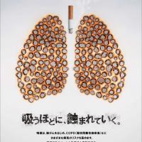 禁煙続行中