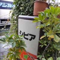 傳吉商店のほっとけーき後、喫茶シビアへ(北千住)