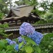 岩国吉香公園9(ヨシ)