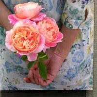 満開のバラに会えた