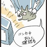 ハンカチーフくださいねっ!涙ふくからぁぁ(`Δ´)!