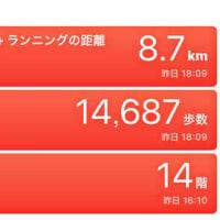 【東京都内でのハンパない移動歩数】