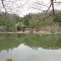 浄土幻想(白水阿弥陀堂に想う)