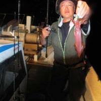6/23(金):絶好調でした^^マイカ型良く数もバッチリゲット!!根魚はアコウにウッカリカサゴとアジに鯖に太刀魚も^^