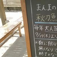 島田市 『めん奏心』
