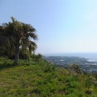 種子島の木折坂・こころ旅から