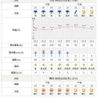 6月20日(火) 23:55 雨らしい雨。