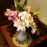 4/25ゆっくりした日(⌒‐⌒)