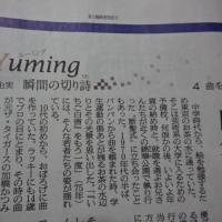 朝日新聞に、ザ・タイガースの加橋かつみ