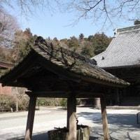初春の妙本寺を楽しむオヤジ♪、(2017初春)。