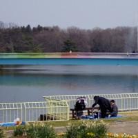 春分の日の長居公園&長居植物園 6 (大阪市)