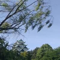 名古屋城 初夏の風